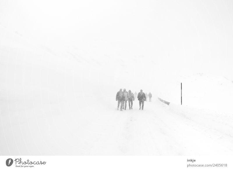 Winter | Jahreszeiten Mensch Landschaft Straße Erwachsene kalt Wege & Pfade Schnee Menschengruppe grau Stimmung Ausflug gehen Schneefall Freizeit & Hobby