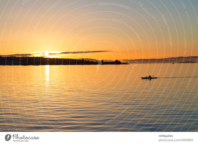 Oslo Fjord Kajakfahren bei Sonnenuntergang Lifestyle Freude Erholung Ferien & Urlaub & Reisen Abenteuer Strand Meer Insel Sport Natur Landschaft Himmel See
