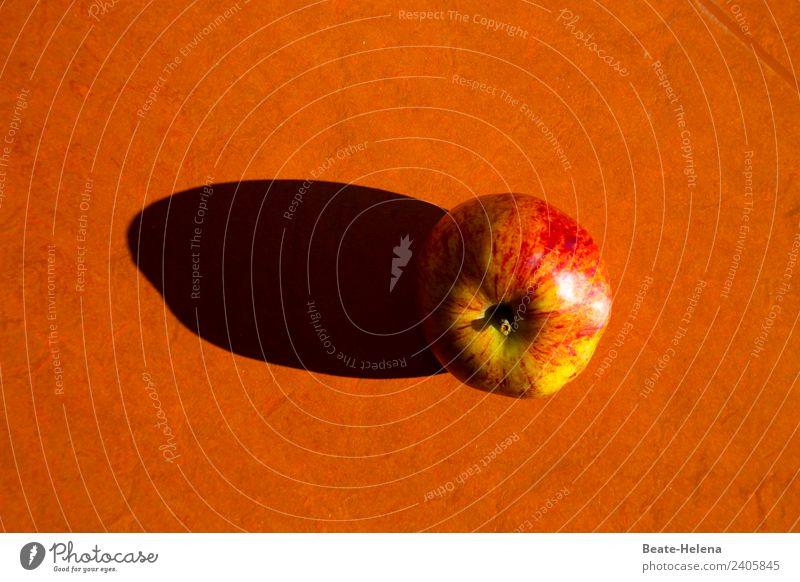Nullachtfünfzehn | und doch einzigartig Lebensmittel Frucht Apfel Ernährung Bioprodukte kaufen Gesundheit Gesunde Ernährung Fitness Natur Diät Essen genießen