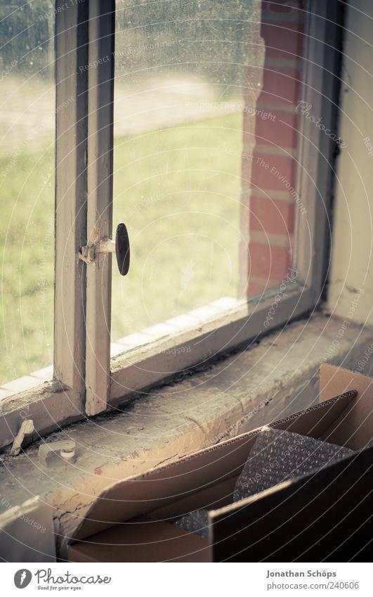 Pappkiste vorm Fenster [klapprig, schön] alt Wiese Holz Traurigkeit Glas geschlossen dreckig Armut ästhetisch trist verfallen Backstein Vergangenheit Verfall