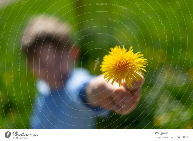 Muttertag Wohlgefühl Zufriedenheit Mädchen Junge Kindheit 1 Mensch 3-8 Jahre Freundlichkeit frisch Gesundheit Zusammensein Glück gelb grün Freude Fröhlichkeit