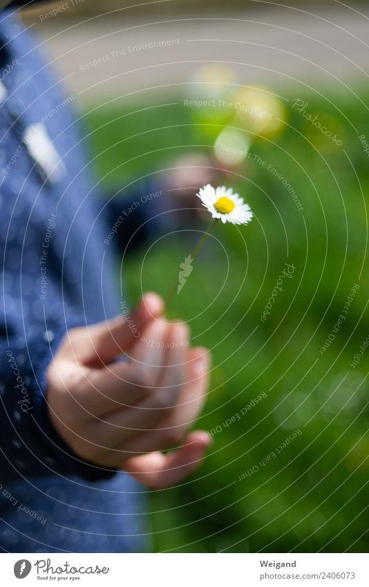 Dankeschön II Erholung ruhig Meditation Duft Kindergarten Kleinkind Kindheit beobachten berühren laufen Freundlichkeit Fröhlichkeit Freude Glück Zufriedenheit