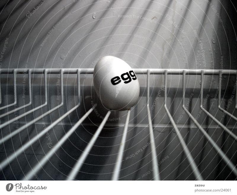 Das gefangene Ei kalt Kunst Skulptur Kühlschrank Eierschale Gitter Ostern Osterei Hoffnung Ernährung Justizvollzugsanstalt egg Nahaufnahme