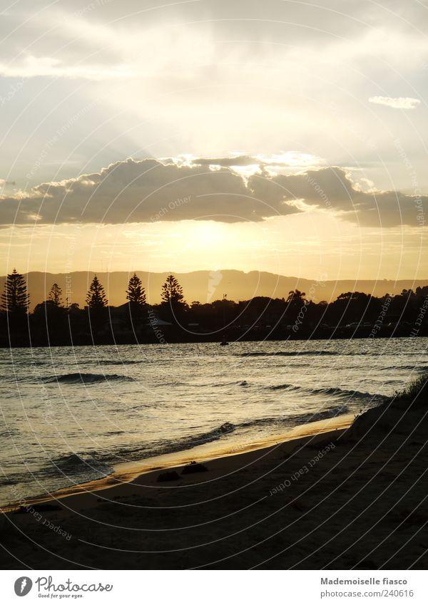 Lust auf Fischen? Wasser Sommer Meer Baum Erholung Einsamkeit ruhig Wolken Strand schwarz gelb Küste Wellen Zufriedenheit Schönes Wetter Sommerurlaub