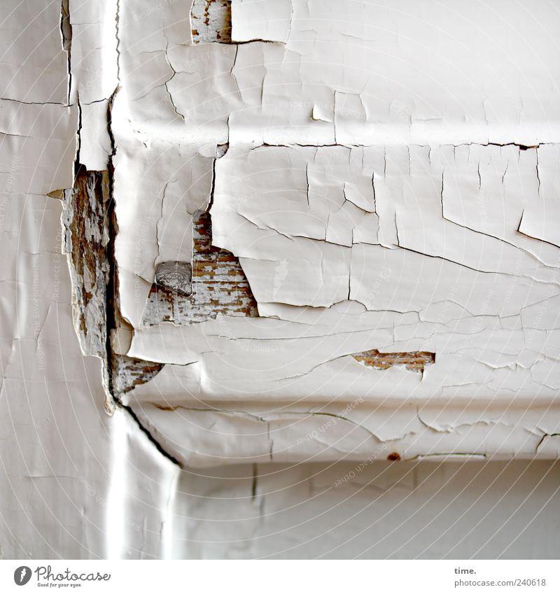 Lackschaden Tür Holz alt eckig kaputt trist braun weiß Nostalgie Schwäche Verfall Vergänglichkeit Riss verfallen abblättern Abnutzung Untergrund lackiert