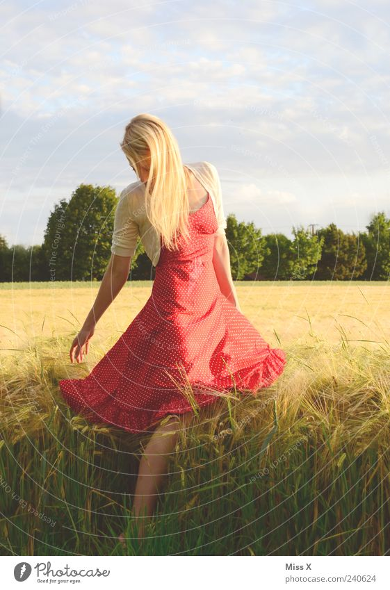 Kornfeld Mensch feminin Junge Frau Jugendliche 1 18-30 Jahre Erwachsene Natur Himmel Sommer Gras Feld Kleid Haare & Frisuren blond langhaarig schön rot Farbfoto