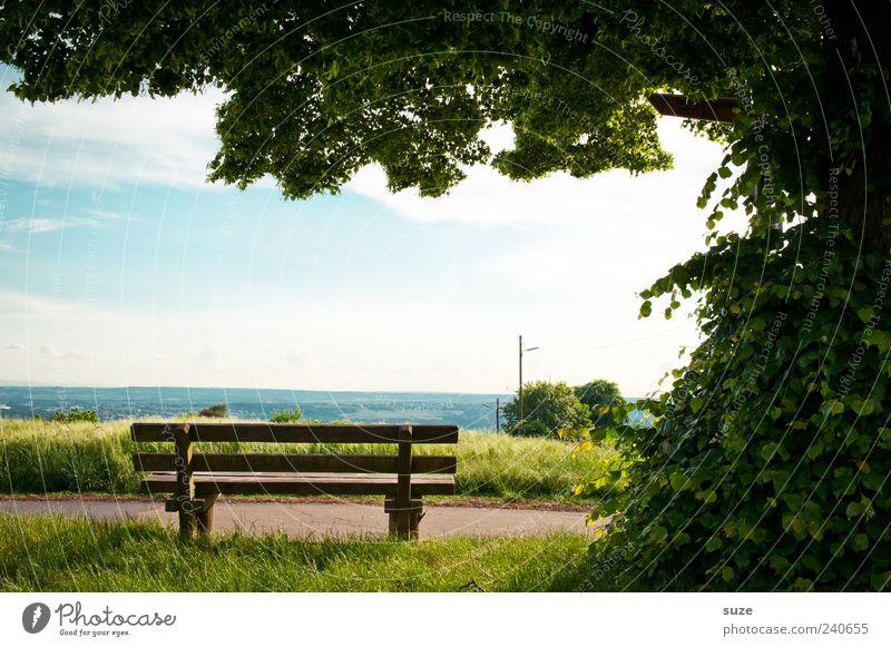 Rastplatz Umwelt Natur Landschaft Himmel Horizont Sommer Schönes Wetter Baum Blatt Wiese Wege & Pfade authentisch schön grün Idylle Pause Bank Aussicht