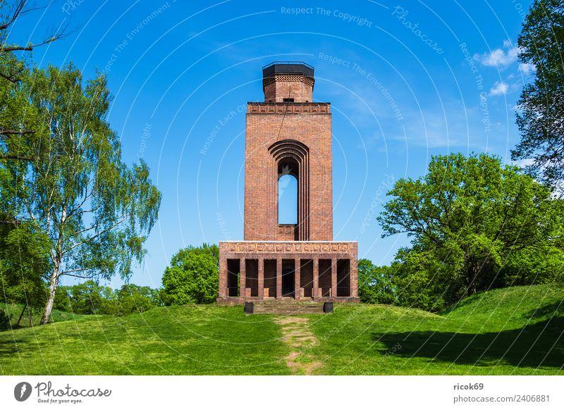 Bismarckturm im Spreewald in Burg Erholung Ferien & Urlaub & Reisen Tourismus Wolken Baum Gras Burg oder Schloss Bauwerk Gebäude Architektur Sehenswürdigkeit