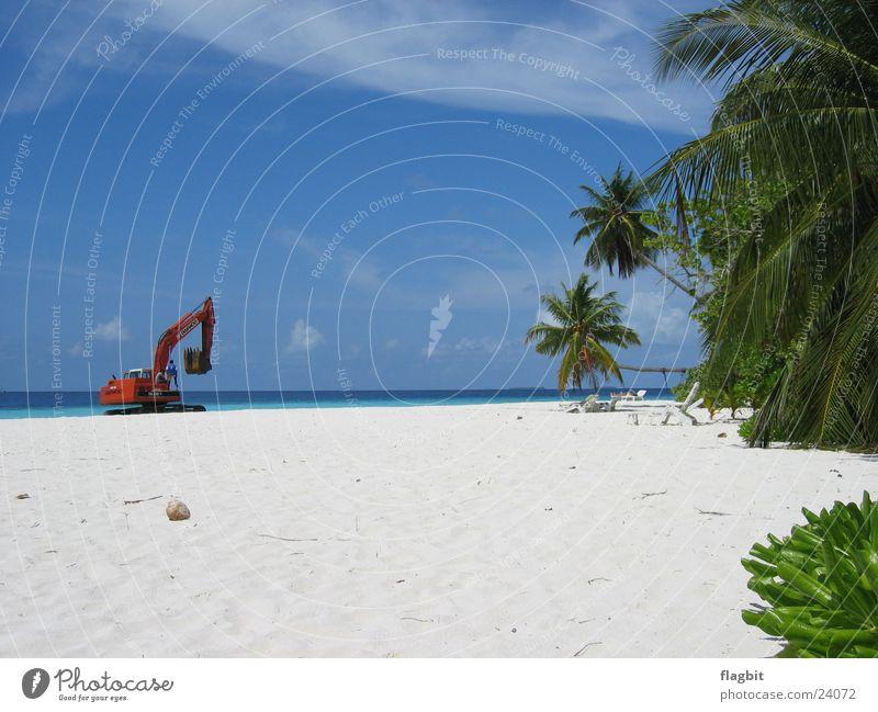 Arbeit im Paradies Strand Bagger Palme Meer Ferien & Urlaub & Reisen Arbeit & Erwerbstätigkeit Sand