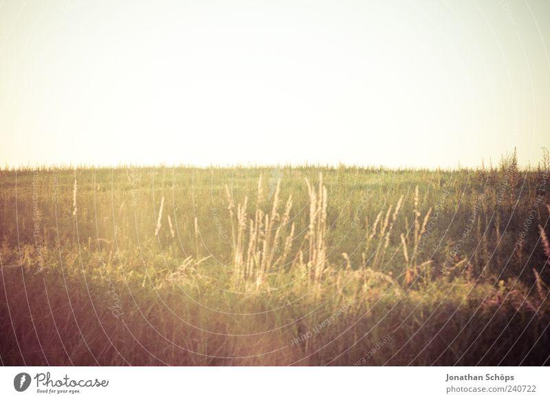 Abendstimmung Himmel Natur Erholung Ferne Umwelt Landschaft Wiese Gefühle Gras Freiheit Horizont Stimmung Wetter Zufriedenheit Feld Klima