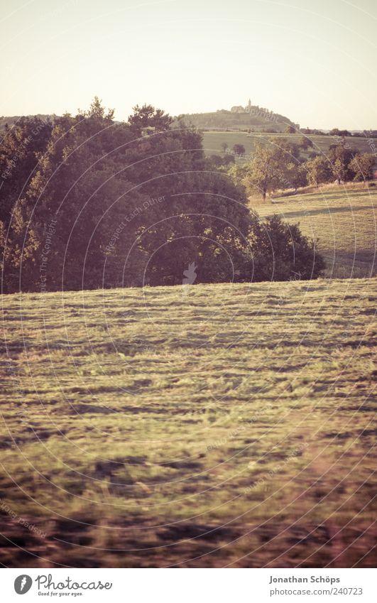 Weite Natur Ferien & Urlaub & Reisen Baum Sommer Erholung Ferne Umwelt Landschaft Wiese Freiheit Feld Ausflug ästhetisch Schönes Wetter Hügel Burg oder Schloss