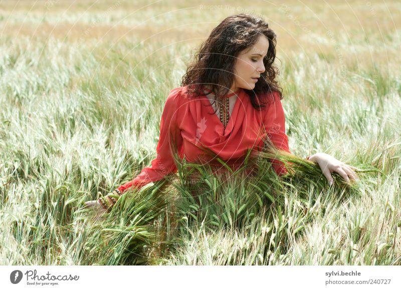 """*Kornblume"""" harmonisch Wohlgefühl Zufriedenheit Erholung ruhig Mensch feminin Junge Frau Jugendliche Leben 18-30 Jahre Erwachsene Umwelt Natur Sommer Feld Kleid"""