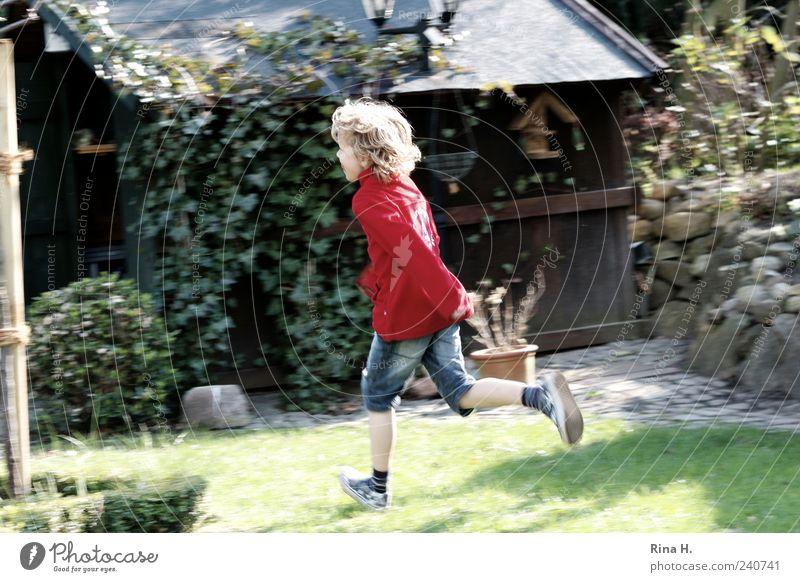 Lauf Junge Mensch maskulin Kind 1 3-8 Jahre Kindheit Garten Jeanshose Turnschuh blond Locken rennen laufen Spielen authentisch Fröhlichkeit wild mehrfarbig grün