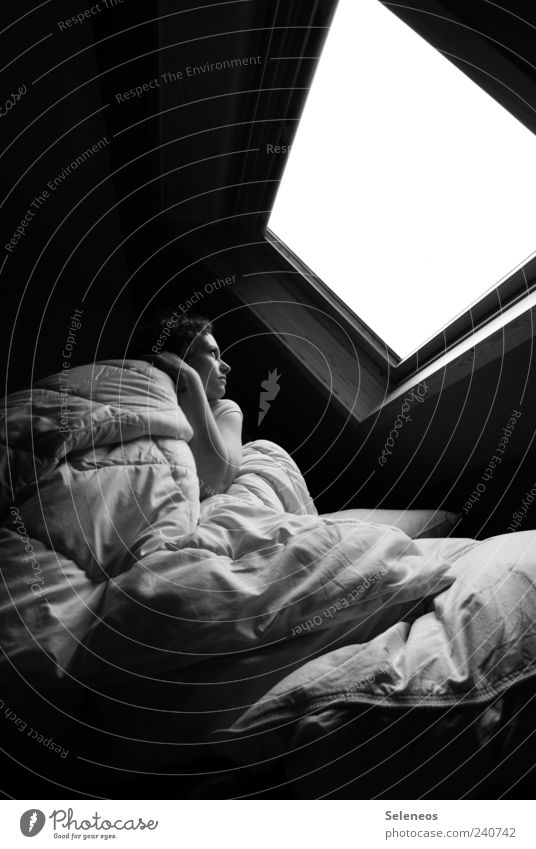 unterm Dach Mensch Einsamkeit Fenster dunkel feminin träumen hell Raum Wohnung schlafen Häusliches Leben Bett beobachten berühren Neigung kuschlig