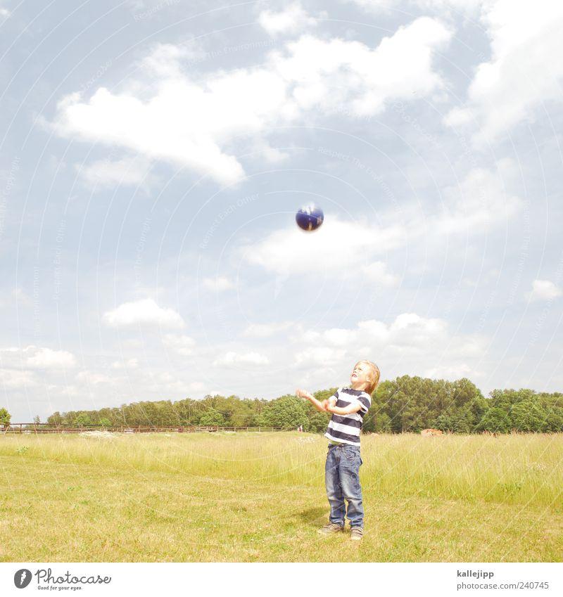 baller mann Lifestyle Freizeit & Hobby Spielen Mensch Junge Kindheit Leben 1 3-8 Jahre Umwelt Natur Landschaft Pflanze Himmel Wolkenloser Himmel Sommer Park