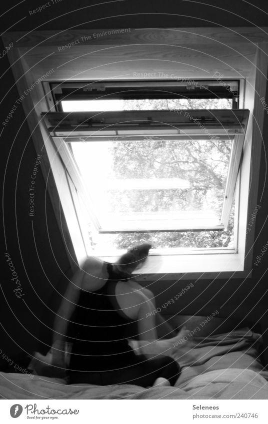 guten Morgen liebe Sorgen Mensch Baum Pflanze feminin Fenster Bewegung Raum Rücken Wohnung sitzen offen Häusliches Leben Bett Decke Schlafzimmer Dachfenster