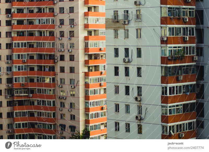 Sicht der Platte Stadt Haus Fenster Fassade Stimmung Häusliches Leben Wachstum trist Ordnung authentisch Perspektive groß Vergänglichkeit Schutz Balkon eckig