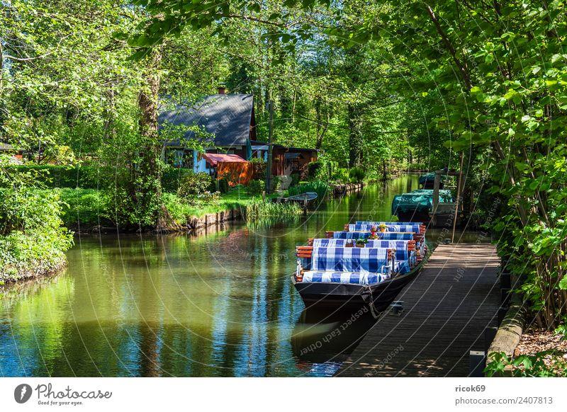 Kahn im Spreewald in Lehde Natur Ferien & Urlaub & Reisen alt grün Wasser Landschaft Baum Erholung Haus ruhig Wald Architektur Umwelt Frühling Gebäude Tourismus