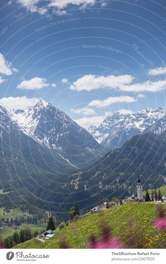 Ftan Natur Landschaft blau grün violett rosa weiß Berge u. Gebirge Schnee Gipfel Dorf Bergdorf Bergwiese Blumenwiese Vielfältig Blühend Frühling Engadin Schweiz