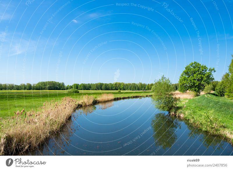 Landschaft im Spreewald bei Lübbenau Erholung Ferien & Urlaub & Reisen Tourismus Natur Wasser Wolken Frühling Baum Wald Fluss Sehenswürdigkeit blau grün