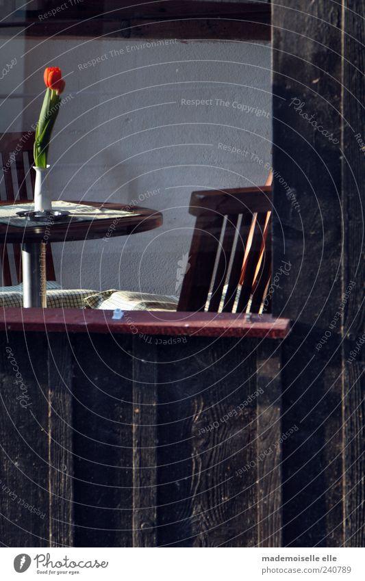 Idylle Restaurant Café Stil Tourismus Sommer Dekoration & Verzierung Möbel Stuhl Tisch ausgehen Gebäude Fenster Vase Holz Blühend Denken Duft genießen sitzen