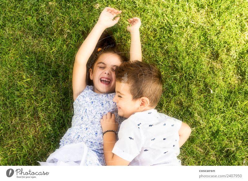 Zwei kleine Kinder spielen auf dem grünen Gras. Freude Glück schön Spielen Sommer Junge Familie & Verwandtschaft Freundschaft Kindheit Natur Park Lächeln lachen
