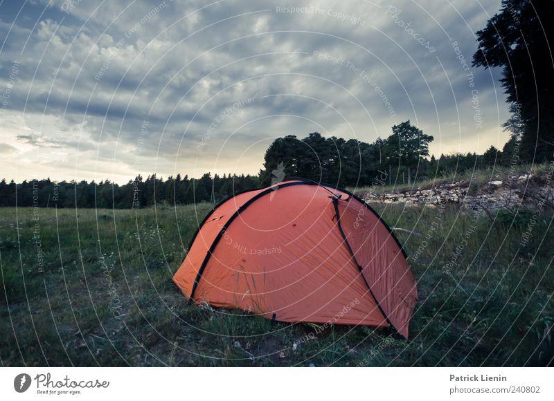 Never stop exploring Freiheit Camping Berge u. Gebirge Umwelt Natur Landschaft Pflanze Urelemente Himmel Klima Wetter schlechtes Wetter Wald Hügel Felsen