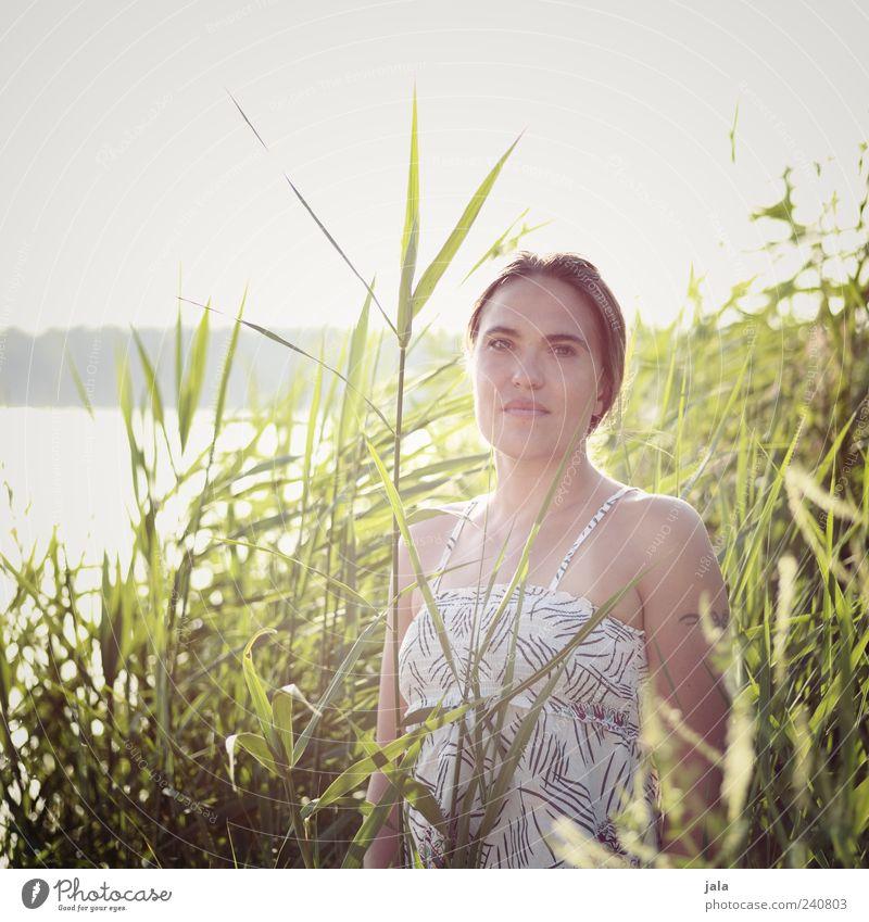stefania Mensch feminin Frau Erwachsene 1 30-45 Jahre Natur Himmel Sonne Sonnenlicht Sommer Schönes Wetter Pflanze Sträucher Grünpflanze Schilfrohr Seeufer