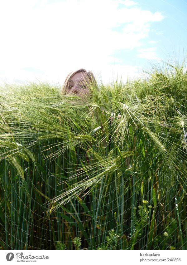 Ein Bad im Getreidemeer Mensch Frau Natur Jugendliche blau grün Pflanze Sommer Freude Erwachsene Spielen Kopf lustig Junge Frau blond Feld