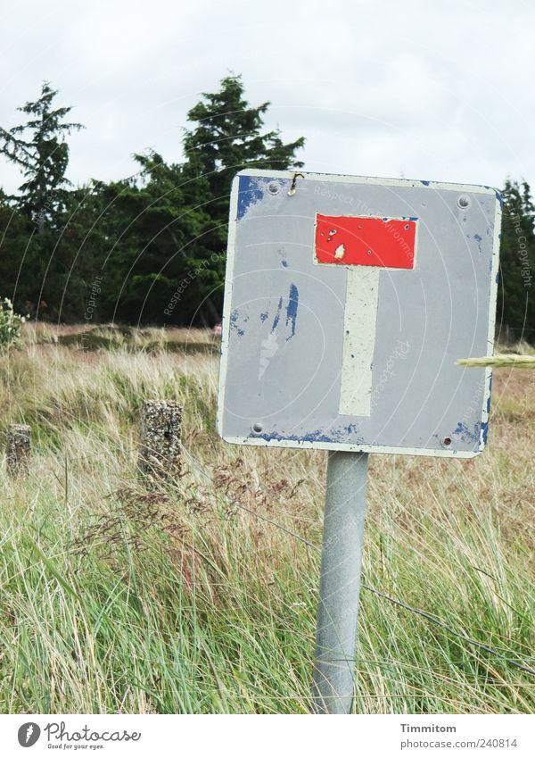 Starke Reste Natur Landschaft Pflanze Baum Gras Wiese Metall Schilder & Markierungen Hinweisschild Warnschild Verkehrszeichen grün rot Gelassenheit Erholung