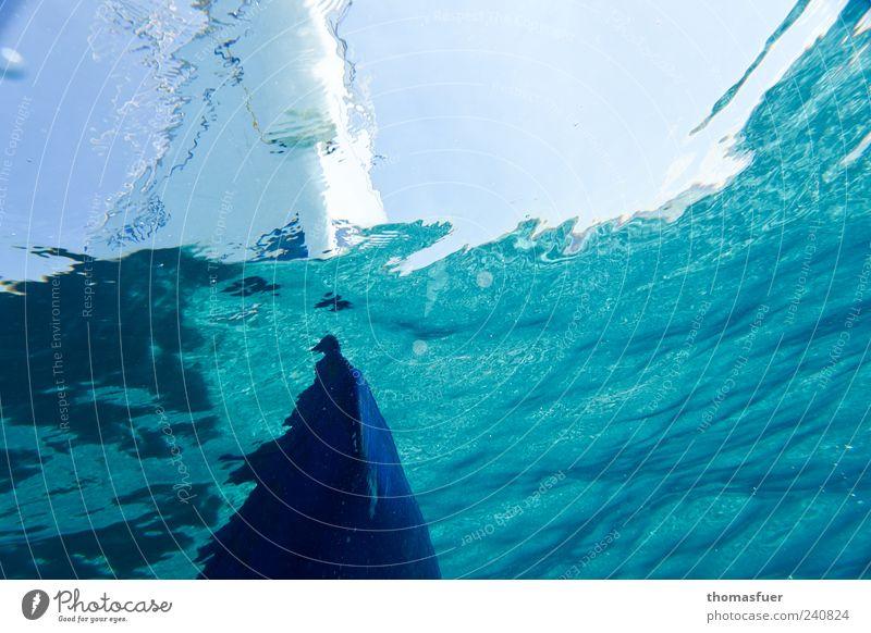 Waterworld blau Wasser Ferien & Urlaub & Reisen Sommer Meer Freude Schwimmen & Baden Wellen Unterwasseraufnahme tauchen Segeln Wasserfahrzeug Wassersport