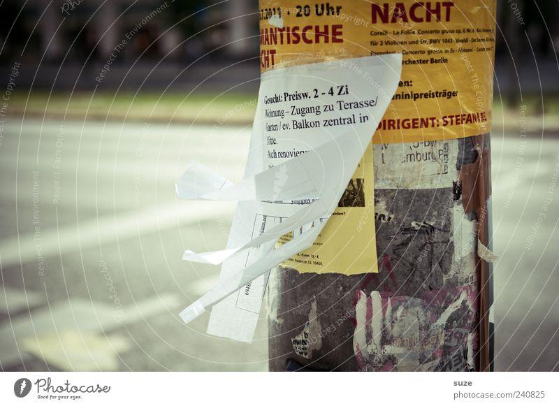 Suche Zimmer Deutschland Freizeit & Hobby Lifestyle authentisch Papier Kontakt Information Werbung Hinweis Zettel Anzeige privat Inserat Handzettel gesucht