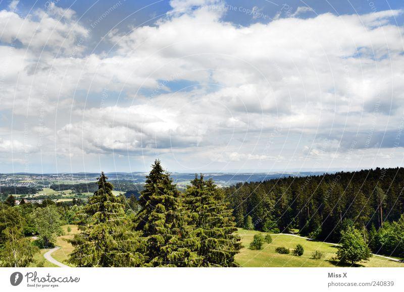 Postkarte Himmel Natur Ferien & Urlaub & Reisen grün Baum Sommer Wolken Erholung Wald Ferne Landschaft Wiese Freiheit Horizont Wetter Ausflug