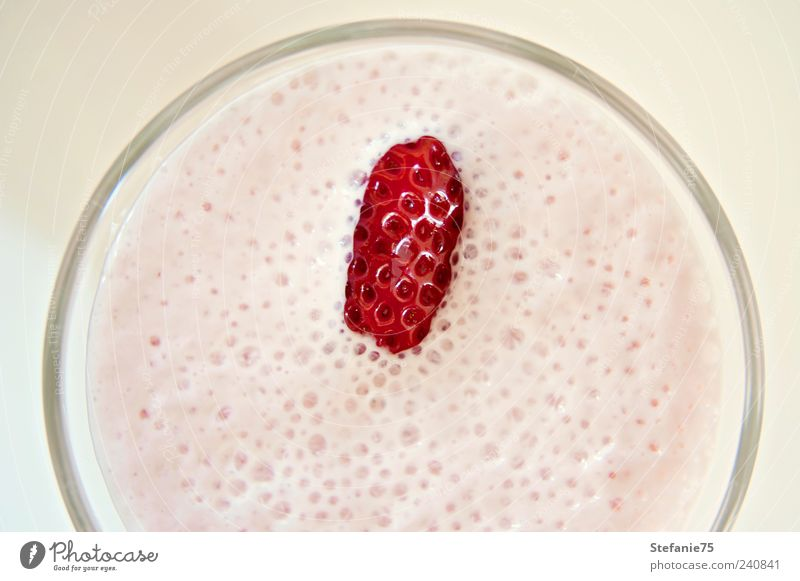 Erdbeer-Milchshake Joghurt Frucht Erdbeeren Getränk Erfrischungsgetränk Glas Gesundheit Leben genießen trinken Coolness einfach Fröhlichkeit saftig süß rot