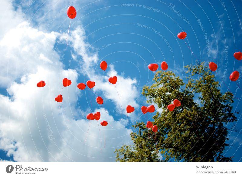 Himmel Sommer Freude Ferne Freiheit Glück Stil fliegen Herz elegant Fröhlichkeit Spielzeug Veranstaltung Dienstleistungsgewerbe Jahrmarkt Reichtum