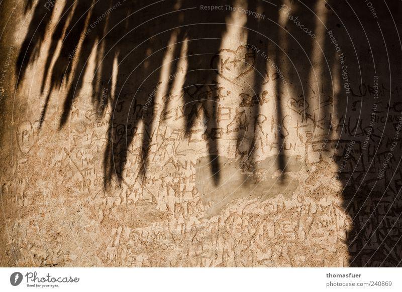 1000 mal Killroy Sightseeing Graffiti Palme Bauwerk Festung Mauer Wand Schriftzeichen Tourismus Wunsch Mitteilung Information Gedeckte Farben Außenaufnahme