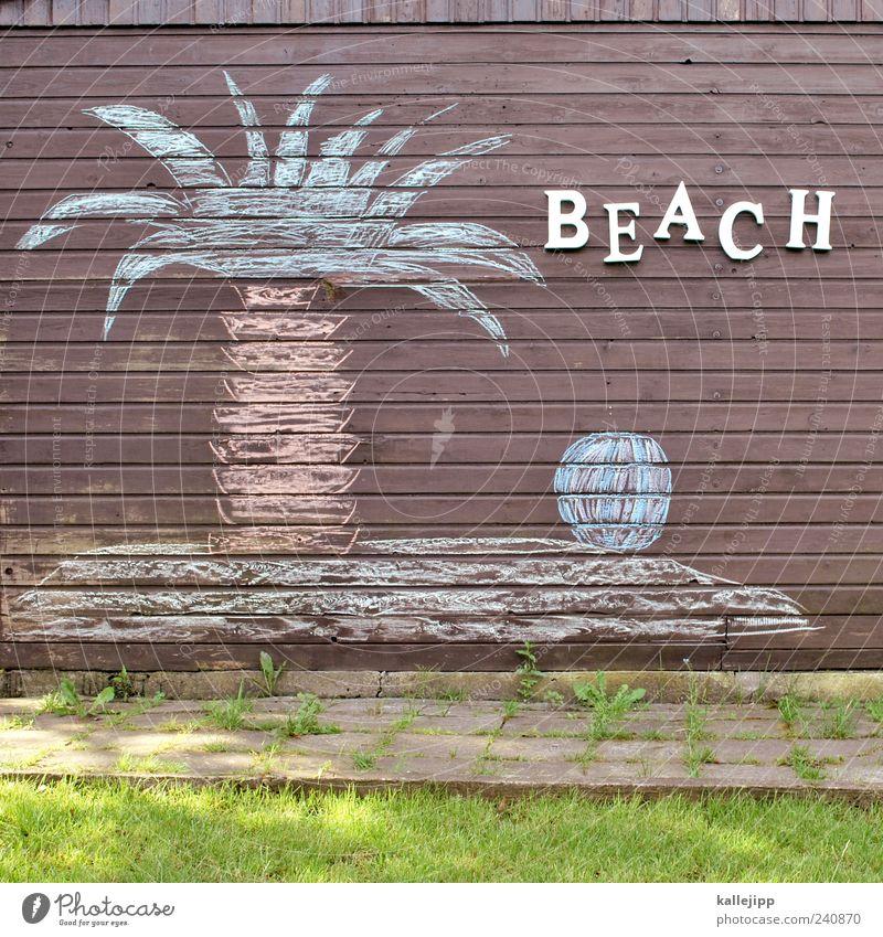 beach boys Natur Ferien & Urlaub & Reisen Baum Pflanze Sommer Meer Strand Freude Erholung Ferne Umwelt Landschaft Wiese Küste Glück Garten