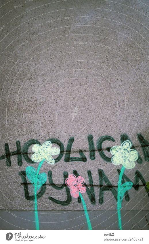 Deeskalation Subkultur Wandmalereien Graffiti Blume Mauer Fassade Schriftzeichen trashig Wut Aggression Gewalt Hooligan Schmiererei Kritzelei widersetzen