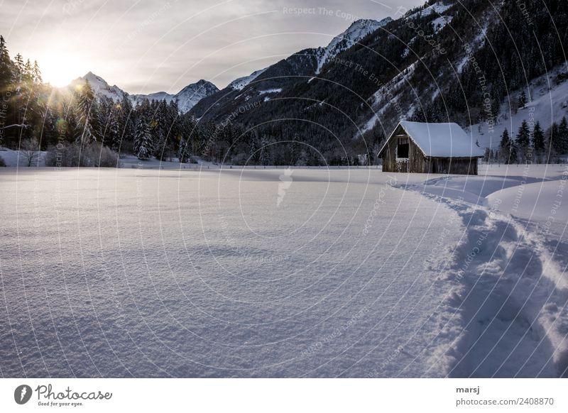 Erneuter Wintereinbruch | Falschmeldung Natur Landschaft Berge u. Gebirge kalt Schnee Alpen Spuren Hütte Scheune Heuschober