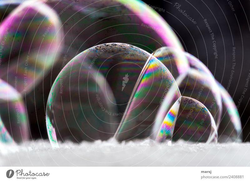 Gruppenkuscheln der Seifenblasen... harmonisch kugelrund Kugel glänzend leuchten außergewöhnlich dunkel dünn authentisch fantastisch einzigartig mehrfarbig