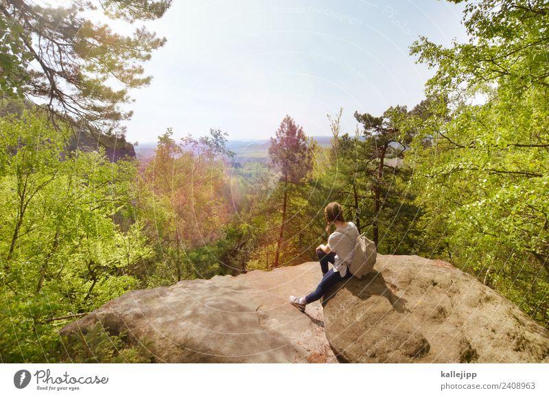 carolafelsen Kind Mensch Natur Ferien & Urlaub & Reisen Jugendliche Sommer Pflanze Landschaft Sonne Baum Tier Ferne Wald Berge u. Gebirge Umwelt Frühling