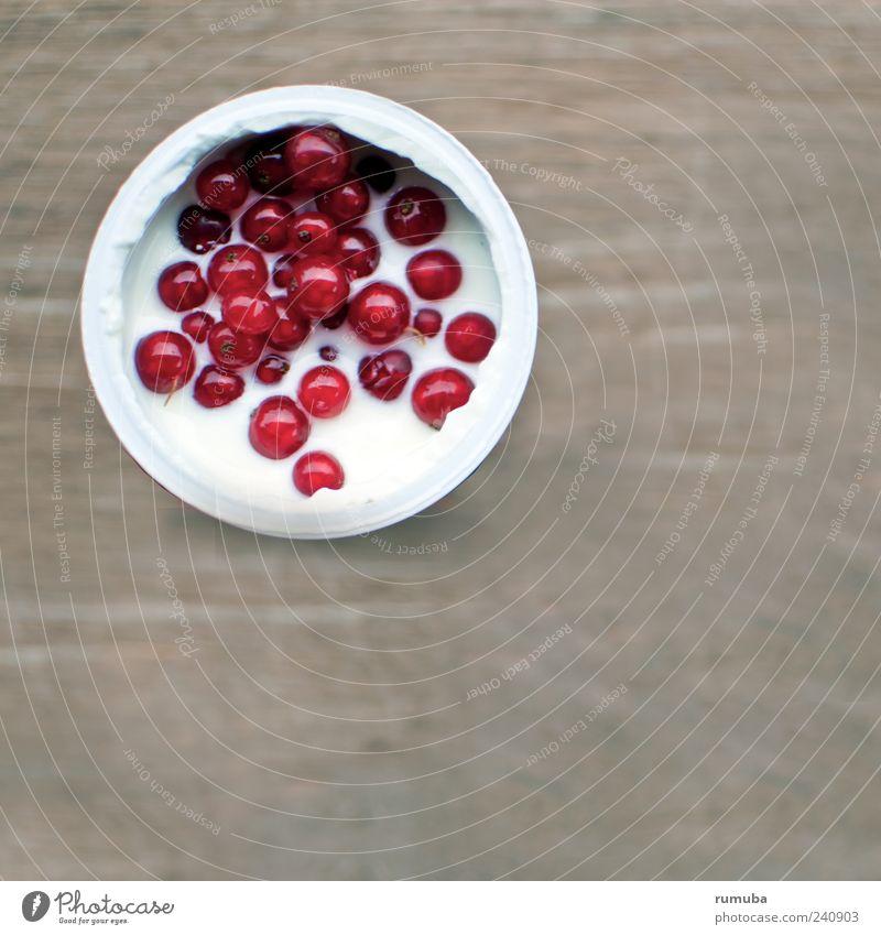 Joghurt mit Johannisbeeren Lebensmittel Frucht Ernährung Bioprodukte Vegetarische Ernährung Becher genießen frisch Gesundheit rot weiß Farbfoto Außenaufnahme