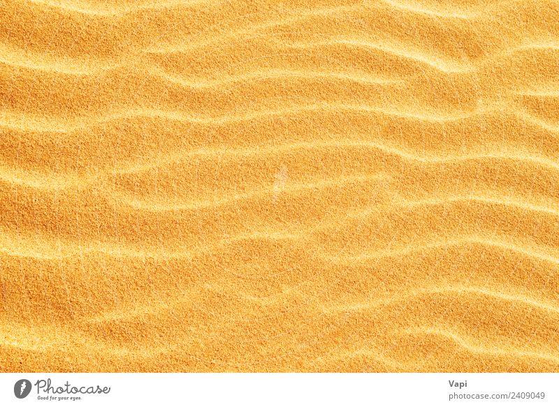 Natur Ferien & Urlaub & Reisen Sommer Sonne weiß Strand Wärme gelb natürlich Küste orange braun Sand Design gold Sauberkeit