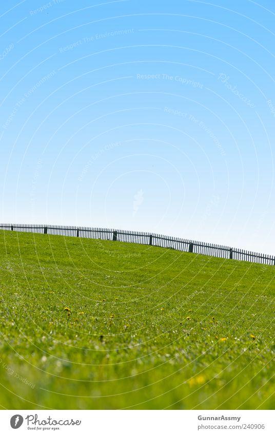 begrenzter Horizont Sommer wandern Umwelt Natur Landschaft Himmel Wolkenloser Himmel Schönes Wetter Gras Park Wiese Hügel Zufriedenheit Farbfoto Außenaufnahme