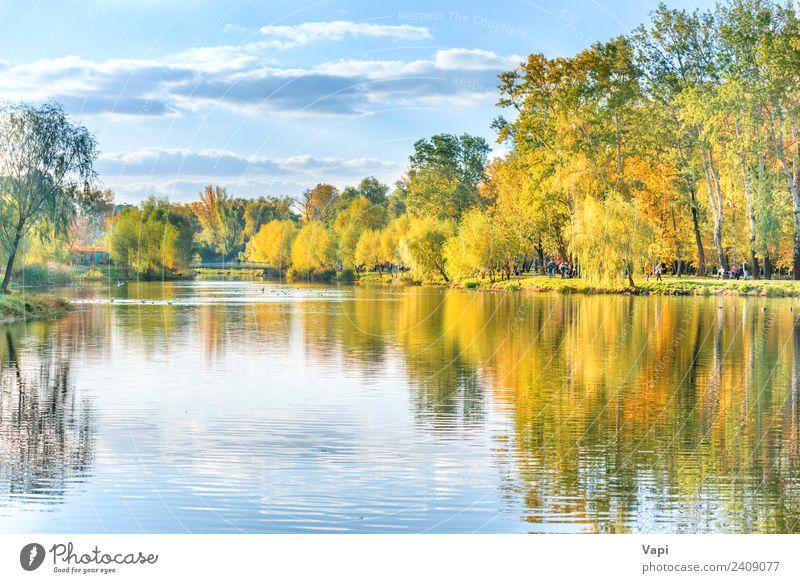 See mit Vögeln im Herbststadtpark schön Erholung ruhig Ferien & Urlaub & Reisen Städtereise Sommer Mensch Menschengruppe Menschenmenge Umwelt Natur Landschaft