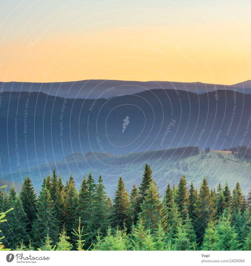 Sonnenuntergang in den Bergen mit Wald schön Ferien & Urlaub & Reisen Tourismus Ausflug Abenteuer Ferne Sommer Berge u. Gebirge wandern Umwelt Natur Landschaft