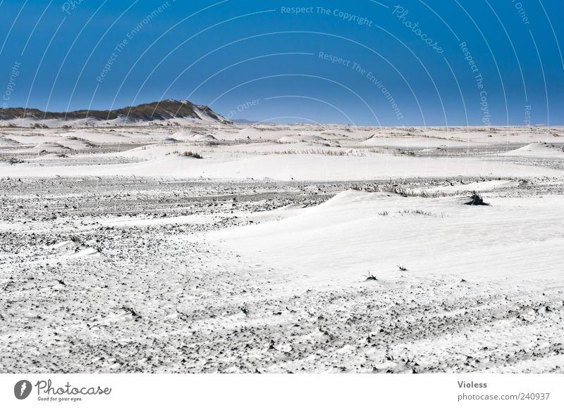 Spiekeroog |.....black fluid Landschaft Sand Wolkenloser Himmel Sommer Strand Nordsee Erholung blau Ferien & Urlaub & Reisen Nordseeinsel Farbfoto Außenaufnahme