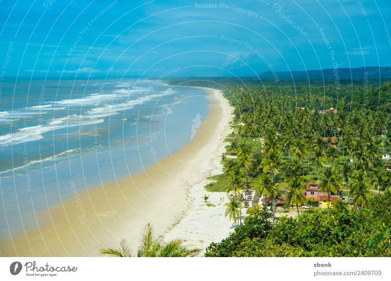 Bahia, Brasilien Ferien & Urlaub & Reisen Strand Wetter Schönes Wetter Wellen Küste ocean water tropical vacation palm tree Südamerika tropisch Farbfoto
