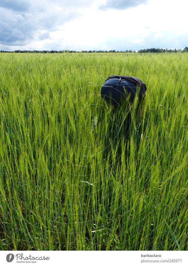 Der Sache auf den Grund gehen Mensch Frau Natur blau grün Sommer Erwachsene Bewegung Feld außergewöhnlich Ausflug Suche Schönes Wetter Gesäß Jeanshose entdecken