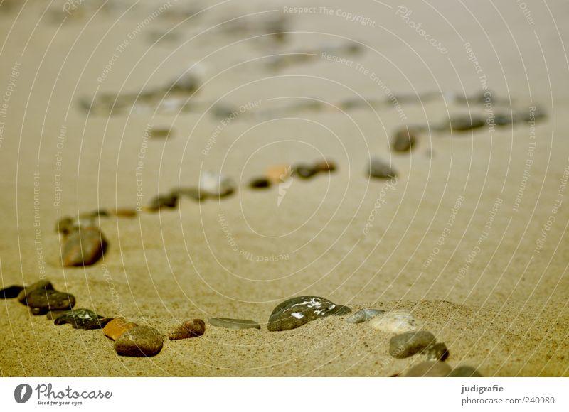 Weststrand Natur Strand Umwelt Sand Stein Linie außergewöhnlich einzigartig Reihe Kurve Schlangenlinie